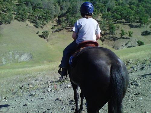 Endurance Riding